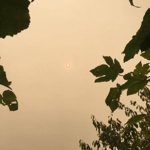 orange sun in a smoky orange sky