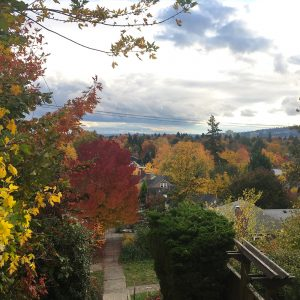 view of Portland in the fall with red, yellow and gold leaves on trees and a cloudy sky.