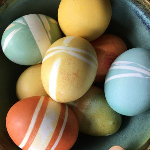 colorful eggs dyed with natural ingredients, yellow, blue and red eggs