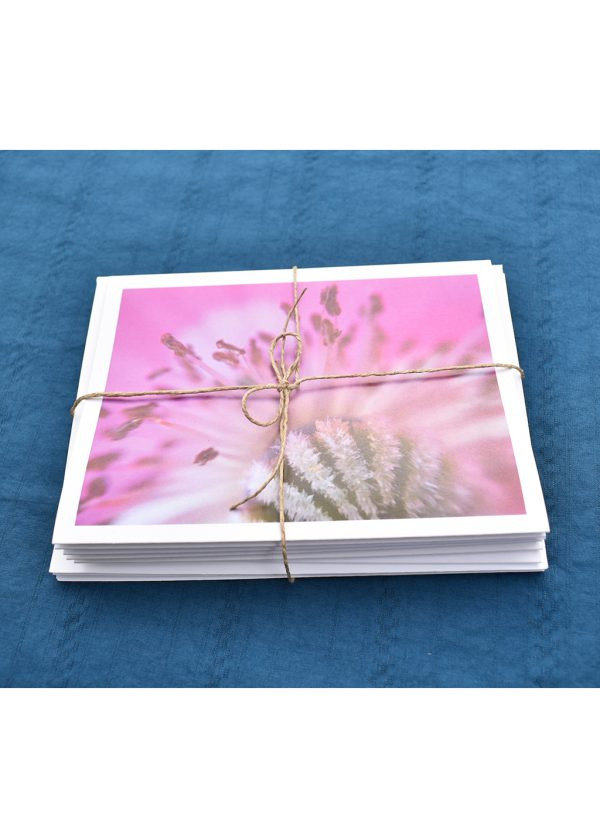 six greeting cards in a stack tied with hemp twine